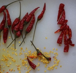 Red chillies harissa